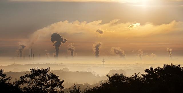 Ecoterrae Medio Ambiente